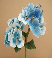 Cold Porcelain Hydrangea Workshop
